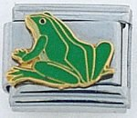 p-24303-frogLG.jpg