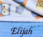Blue Owls minky baby blanket for boys