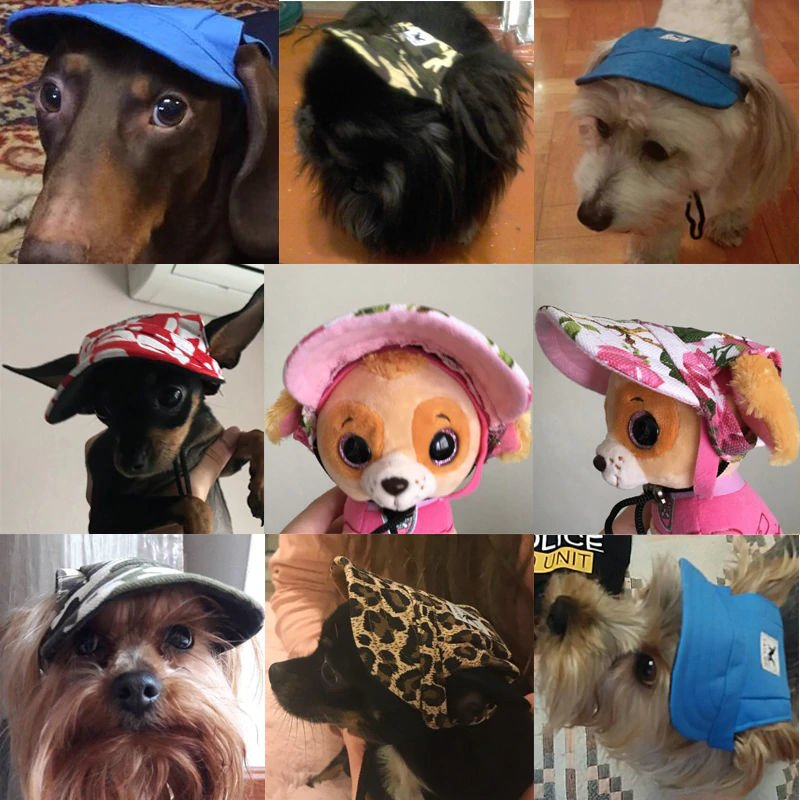 8e88890bf7d floral hat for dogs · tampa ...
