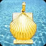 Hawaii Charms
